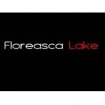 Birou Dezvoltator Floreasca Lake